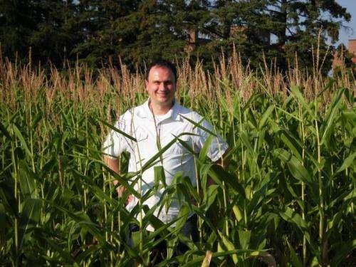 Understanding soil nitrogen management using synchrotron technology