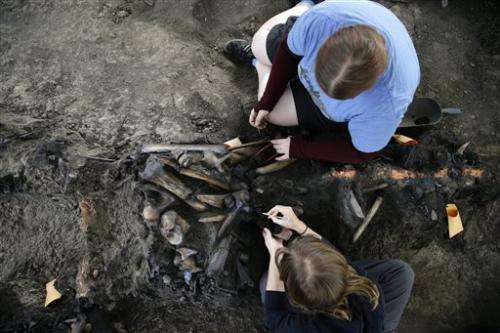 Scientists dig for fossils in LA a century later