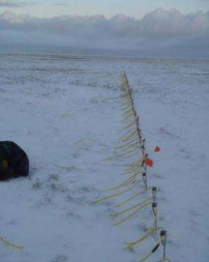 Studying permafrost soil, above and below ground: Research could lead to a better understanding of the Arctic ecosystem