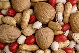 Researchers investigate nut allergy mechanisms