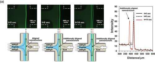 New microfluidic approach for the directed assembly of functional materials