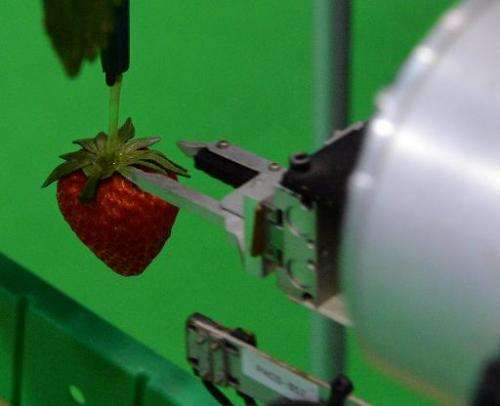 Agricultural machinery maker Shibuya Seiki and National Agriculture and Food Research Organisation display a robot picking a rip