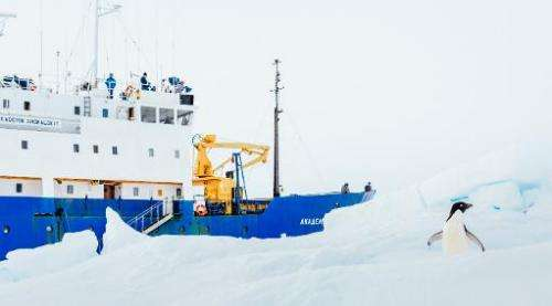 Image taken by Andrew Peacock on December 28, 2013 shows an Adelie Penguin next to the stranded ship MV Akademik Shokalskiy off