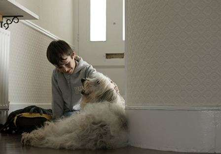 Study shows how children relate to their pets