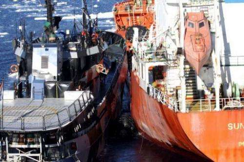 This picture taken on February 20, 2013 shows the environmental group ship Sea Shepherd (L) and an oil supply ship
