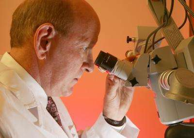 Study identifies potential new strategy to improve odds of corneal transplant acceptance