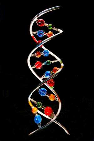 Explainer: What is a gene?