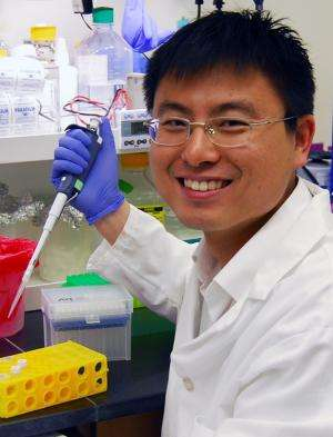 Scientists develop powerful new method for finding therapeutic antibodies