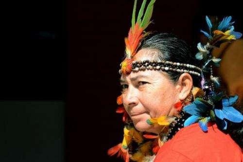 A Brazilian Munduruku native attends a rally in Brasilia, on June 11, 2013