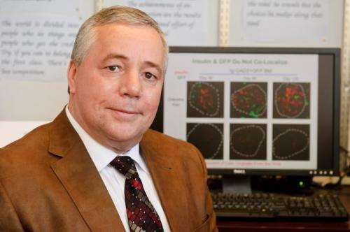 Adult stem cells could hold key to curing Type 1 diabetes