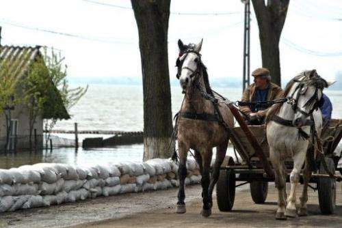 A horse-drawn cart passes by a dam improvised by the villagers in Fetesti, east of Bucharest, on April 17, 2006.