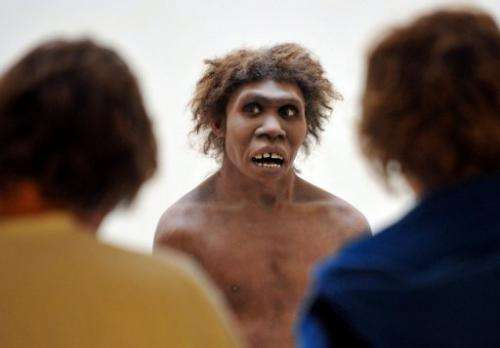 A model representing a Neanderthal man is shown at the National Museum of Prehistory in Eyzies-de-Tayac, Dordogne, 2008