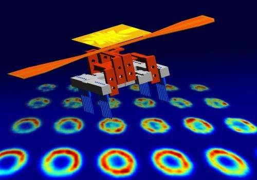 Atoms with quantum-memory