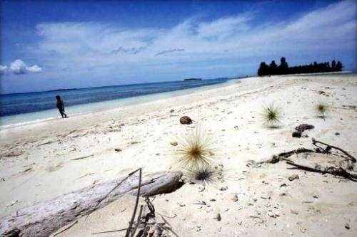 A tourist walks along a white sand beach n Doloda island, North Maluku, Indonesia, on August 25, 2006