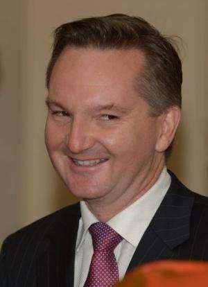 Australia's Treasurer Chris Bowen, pictured in Canberra, on June 27, 2013