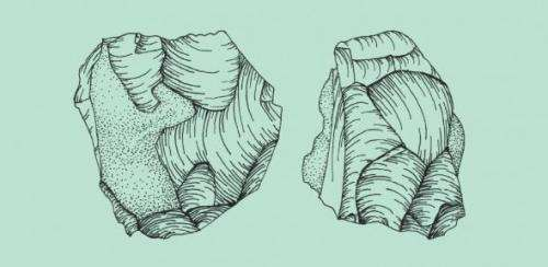 Beachcombing for early humans in Africa