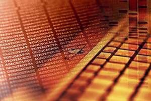 Bioinformatics: Analysis of sequence data falls into line