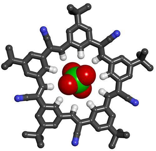 Chemists produce star-shaped macromolecule that grabs large anions