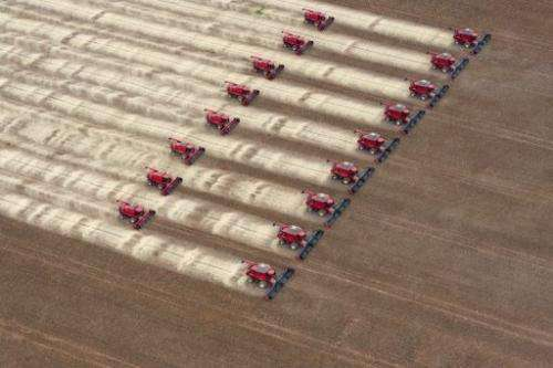 Combine harvesters crop soybeans during a demonstration for the press in Mato Grosso, Brazil, on March 27, 2012