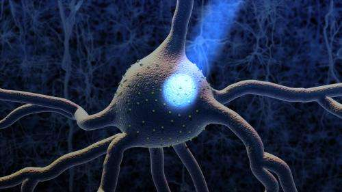 Critical tool for brain research derived from 'pond scum'