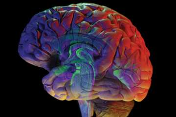 Diabetes and depression: The impact of this widespread disease on the brain is often overlooked