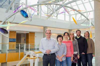 Discovery helps explain how children develop rare, fatal disease