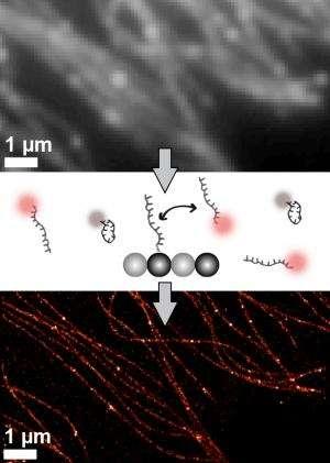 DNA nanotechnology opens new path to super-high-resolution molecular imaging