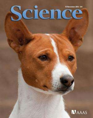 Dogs likely originated in Europe more than 18,000 years ago, UCLA biologists report