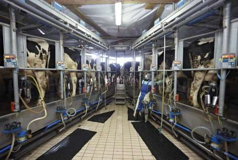 Efficient use of fertilisers on dairy farms