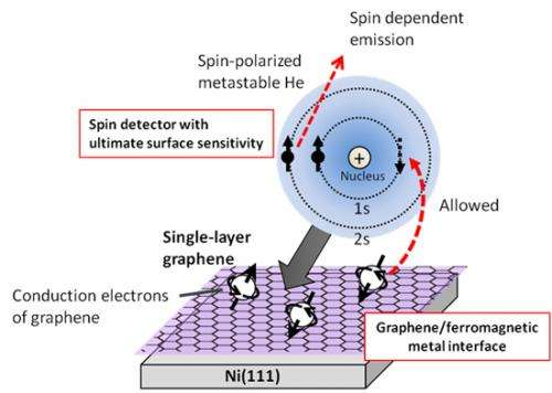 Elucidation of Spin State of Conduction Electrons in Graphene