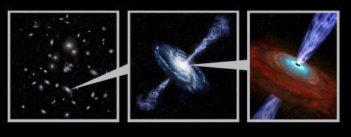 Fat black holes grown up in cities: 'Observational' result using virtual observatory