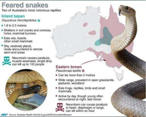 Feared snakes