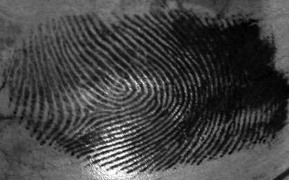 Forensic scientists recover fingerprints from foods