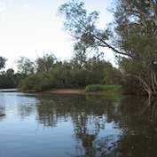 Health check for Perth waterways