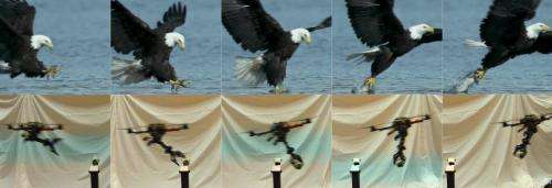Eagle-eyeing researchers design swooping quadrotors with claws (w/ video)