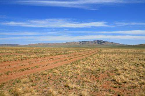 How vegetation competes for rainfall in dry regions
