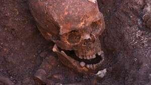 The Search for Richard III wins prestigious award