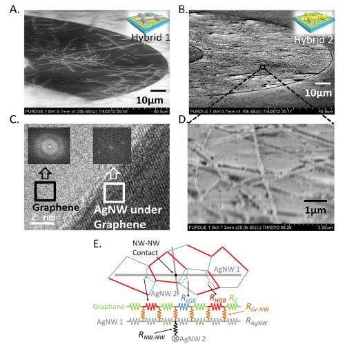 Innovation could bring flexible solar cells, transistors, displays