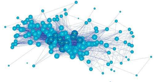 Researchers map primate networks to predict pandemics
