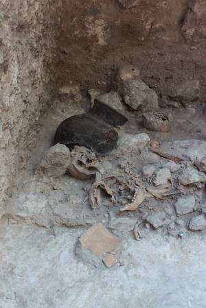 Maya dismembered their enemies