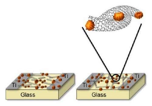 Metallic-to-semiconducting nanotube conversion greatly improves transistor performance