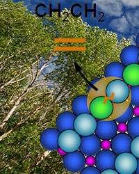 Molecule's carbon chain length affects oxygen's departure in key reaction for building bio-fuels