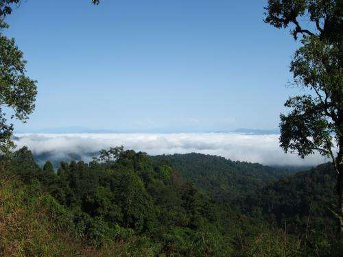 Myanmar at the crossroads: Conservationists see opportunities and challenges in biodiversity hotspot