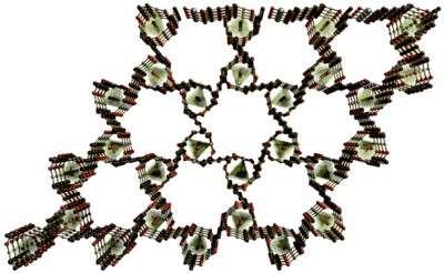 Nanosponge filters out herbicide poisons