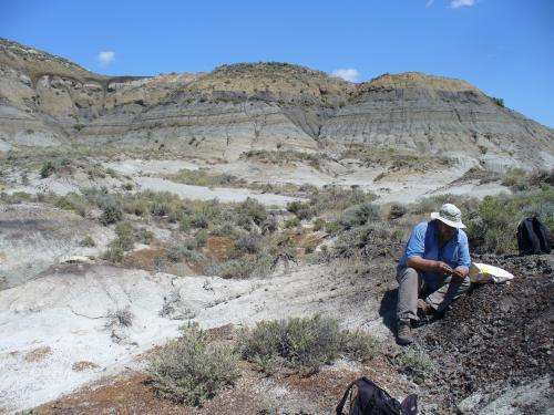 New evidence suggests comet or asteroid impact was last straw for dinosaurs