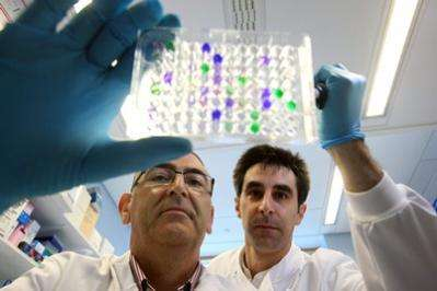 """New hope for dialysis patients as """"Immune-fingerprints"""" discovered"""