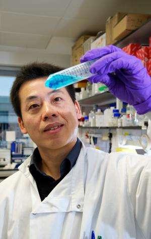 New research links body clocks to osteoarthritis