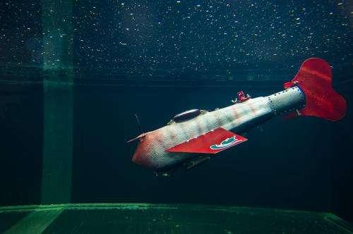 New robotic fish glides indefinitely