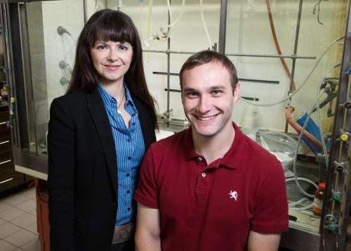 New small-molecule catalyst does the work of many enzymes