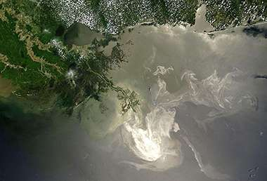Oil-eating microbe communities a mile deep in the Gulf